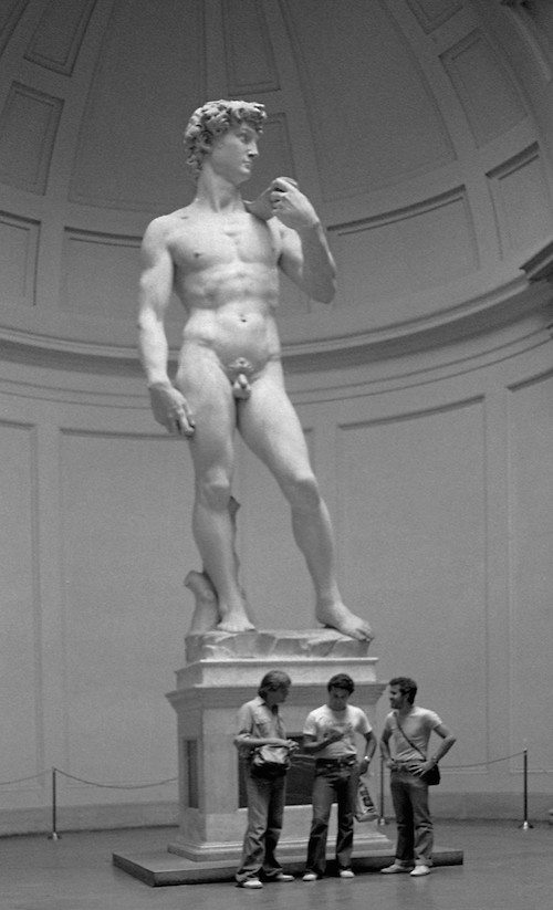 Michelangelo's David Perspective